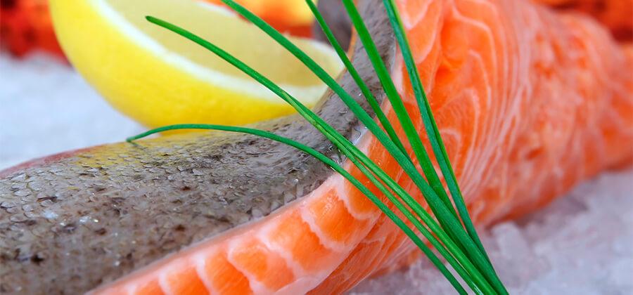 Lebensmittelechte Kunststoffplatten im Überblick