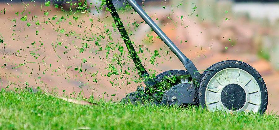 Saubere Rasenkante dank Wurzelsperre aus Polyethylen
