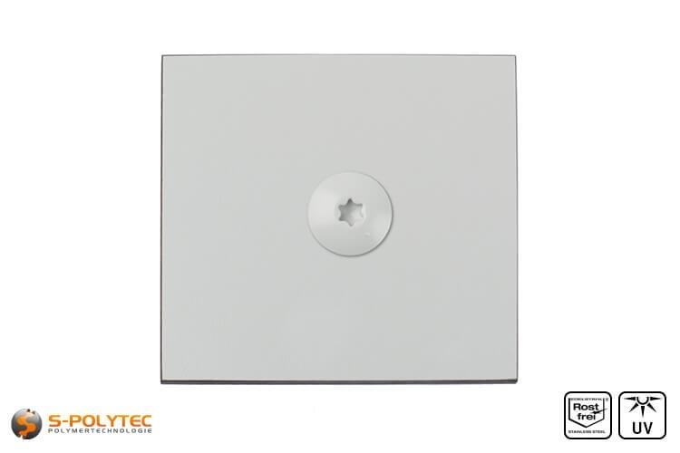 HPL Fassadeschraube 5,5 x 35mm in Lichtgrau